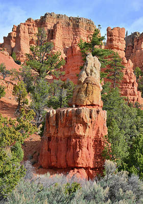 Photograph - Red Castle Turret by Ray Mathis