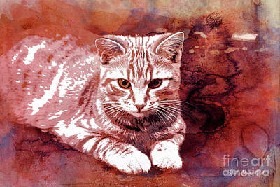 Digital Art - Red Cat by Jutta Maria Pusl
