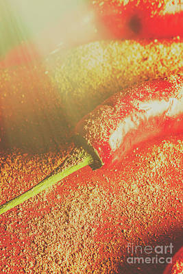 Mexican Photograph - Red Cayenne Pepper In Spicy Seasoning by Jorgo Photography - Wall Art Gallery