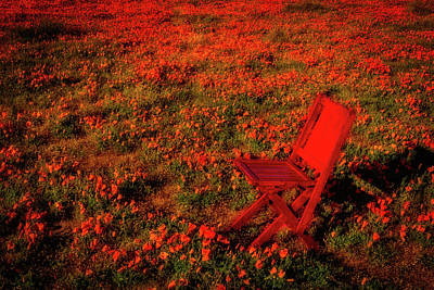 Folding Chair Photograph - Red Chair In Poppy Field by Garry Gay