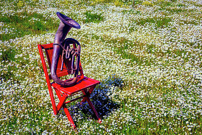 Folding Chair Photograph - Red Chair With Old Horn by Garry Gay