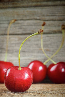 Red Cherries On Barn Wood Art Print by Sandra Cunningham