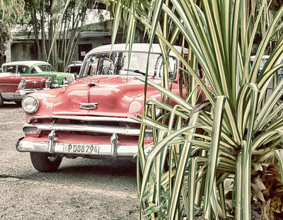 Photograph - Red Chevy by Jessica Levant