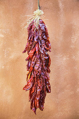 Photograph - Red Chile Ristra by Steven Bateson