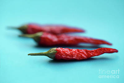 Photograph - Red Chili by Giovanni Malfitano