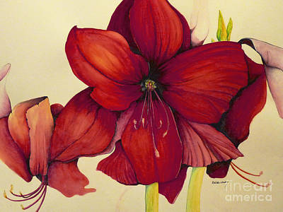 Painting - Red Christmas Amaryllis by Rachel Lowry