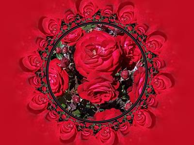 Digital Art - Red Christmas Roses by Nancy Pauling