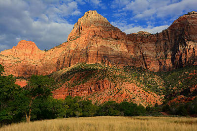 Photograph - Red Cliffs Of Zion by Raymond Salani III