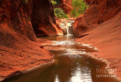 Photograph - Red Cliffs Waterfall Canyon by Adam Jewell