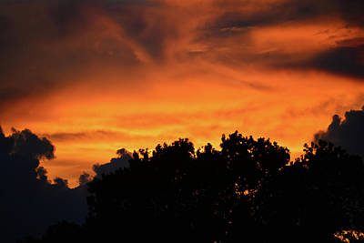Photograph - Red Clouds by David Lee Thompson