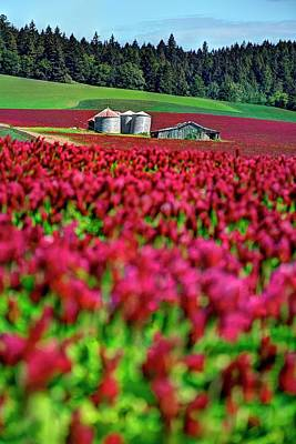 Jerry Sodorff Royalty-Free and Rights-Managed Images - Red Clover Bins Barn by Jerry Sodorff