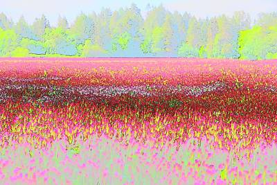 Photograph - Red Clover Treeline by Jerry Sodorff