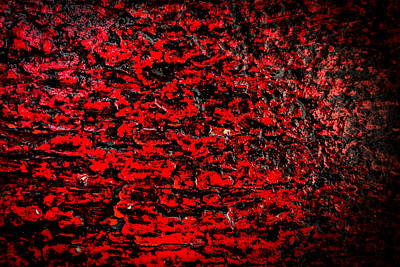Photograph - Red Color Abstract Wood And Rain Water by John Williams