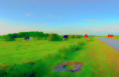 Photograph - Red Cows by Jan W Faul