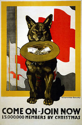 Photograph - Red Cross Poster, 1917 by Granger