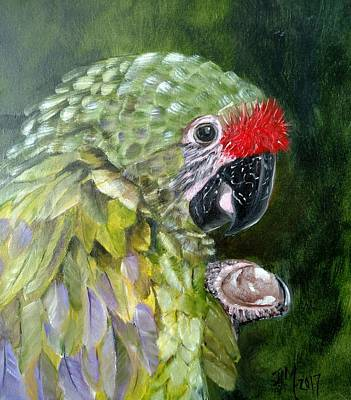 Painting - Red Crown Amazon Parrot by Joan Mansson