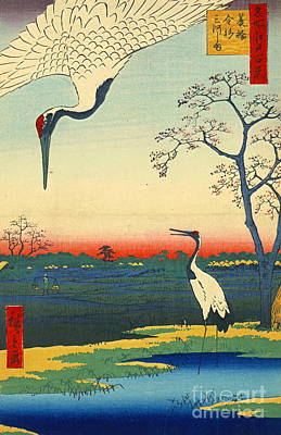 Ando Hiroshige Photograph - Red Crowned Cranes 1857 by Padre Art
