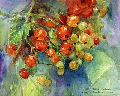 Red Currants Berries Watercolor Art Print