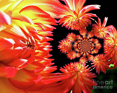 Photograph - Red Dahlia Flower Abstract by Smilin Eyes  Treasures