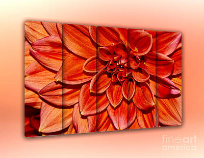 Photograph - Red Dahlia - Panel Art By Kaye Menner by Kaye Menner