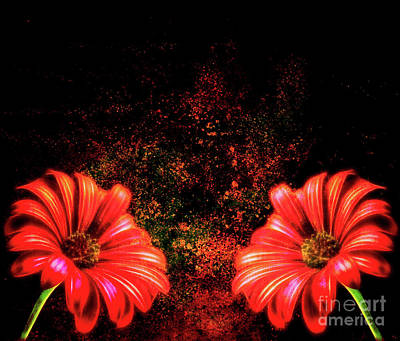 Digital Art - Red Daisy Abstract by Tracey Everington