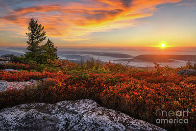 Photograph - Red Dawn Two by Anthony Heflin