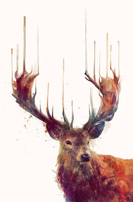 Red Deer Print by Amy Hamilton