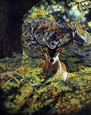 Pastel - Red Deer Stag by Linda Becker