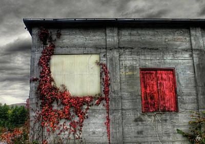Photograph - Red Door Against An Angry Sky by Wayne King