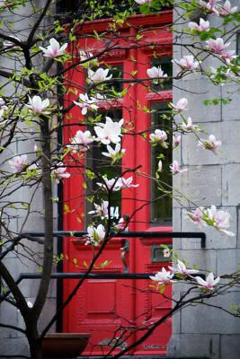 Photograph - Red Door by Lisa Knechtel