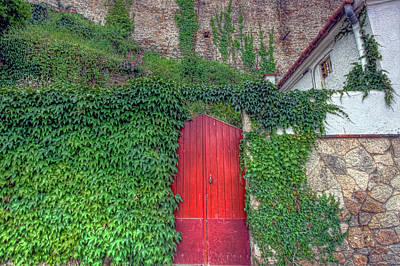 Photograph - Red Door by Nadia Sanowar