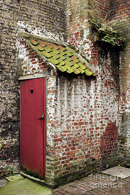 Photograph - Red Door by PJ Boylan