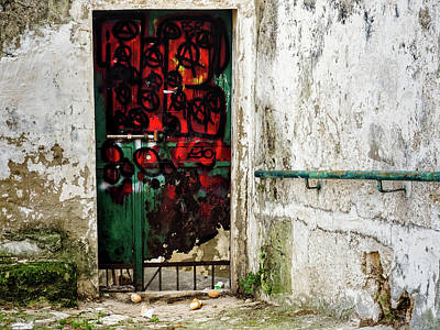 Photograph - Red Door by Robin Zygelman
