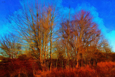 Photograph - Red Earth Blue Sky by Spyder Webb