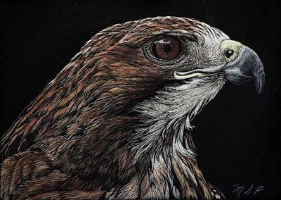 Painting - Red Eye by Margaret Sarah Pardy