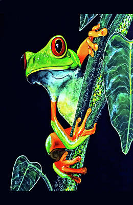 Painting - Red Eye Tree Frog Card by Debbie Chamberlin