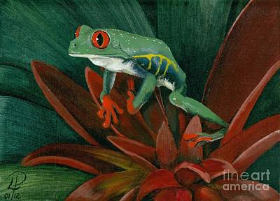 Red-eyed Leaf Frog Art Print by Patsy Fumetti  - SouthWest Design Studio