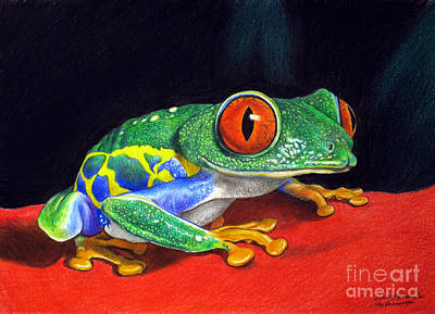 Painting - Red Eyed Tree Frog by Christopher Shellhammer