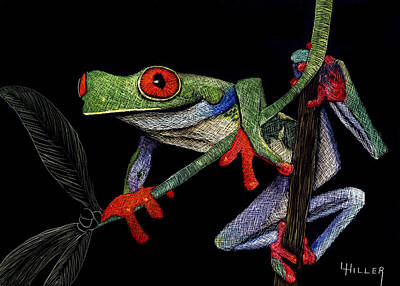 Frogs Mixed Media - Red Eyed Tree Frog by Linda Hiller