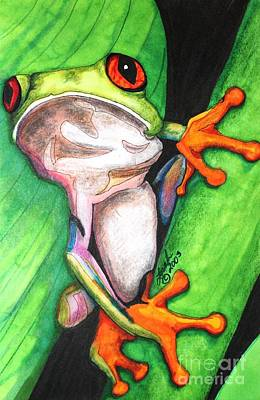 Mixed Media - Red-eyed Tree Frog by Lorah Tout