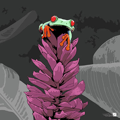 Digital Art - Red-eyed Tree Frog by Marcus England