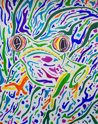 Red Eyed Tree Frog Art Print