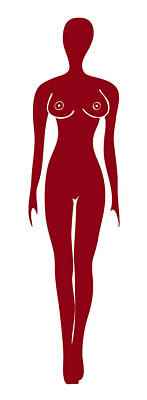 Model Drawing - Red Female Silhouette by Frank Tschakert