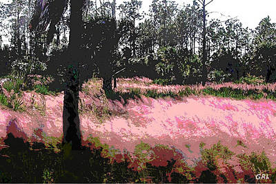 Painting - Red Fire Grass Field Gulf Coast Florida Detail by G Linsenmayer