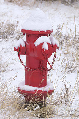 Photograph - Red Fire Hydrant by Loriannah Hespe