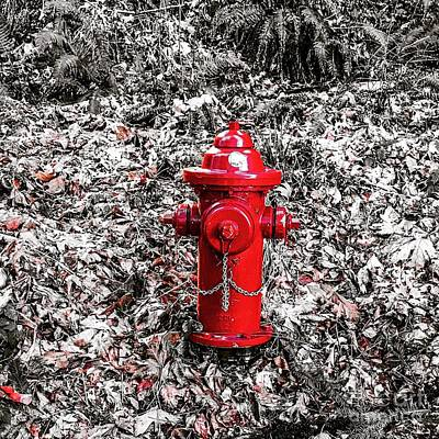 Photograph - Red Fire Hydrant by Suzanne Lorenz