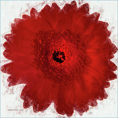 Gerber Daisy Mixed Media - Gerber Daisy Red Floral Portrait by Mona Stut