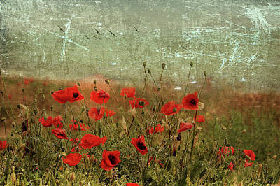 Digital Art - Red Flower Meadow 2 by Yury Malkov