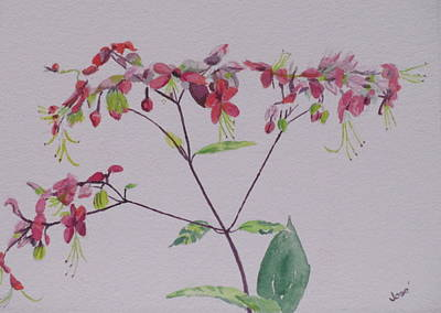 Painting - Red Flower Vine by Hilda and Jose Garrancho