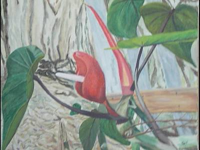 Art Print featuring the painting Red Flowering Vine by Hilda and Jose Garrancho